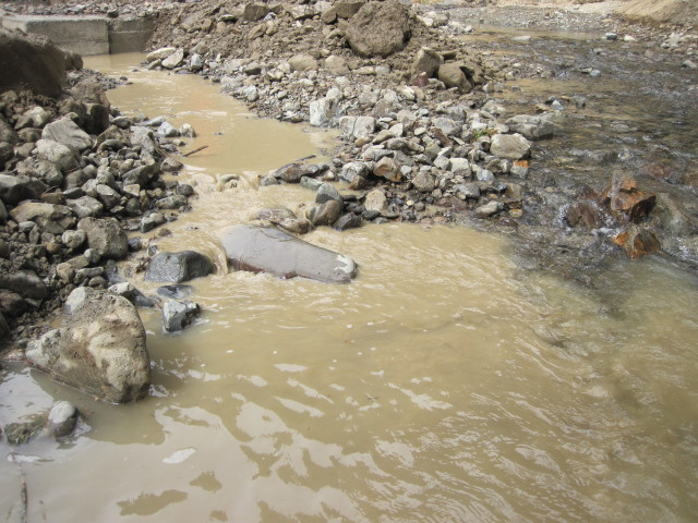 Figure 1: Sedimentation of a Waterbody During Installation of a Crossing (Source: Isobel Oldfield)